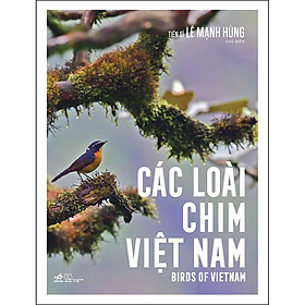 Các Loài Chim Việt Nam (Birds Of Vietnam)