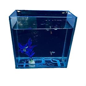 Bể cá mini để bàn TT20 - Tặng phụ kiện