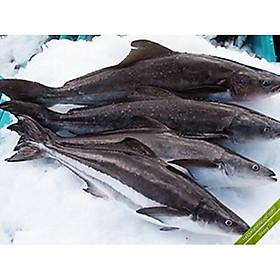 [Chỉ Giao HCM] Cá bốp nguyên con 4kg