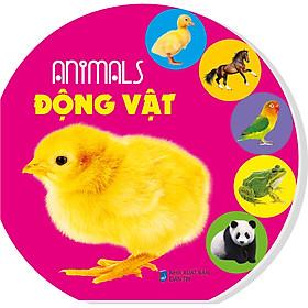 Animals - Động Vật