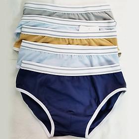 Combo 05 quần brief bé trai - GA Kids