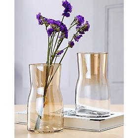 Lọ hoa thủy tinh cắm hoa phong cách Bắc Âu trang trí phòng khách bàn làm việc - HÀNG CÓ SẴN