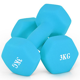 Chengyue matte dip 6 kg (3kg*2) home ladies dumbbells sports fitness thin arm body shaping Zheng Duoyan aerobics men and women training dumbbells CY-136 tranquil blue