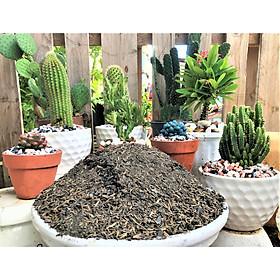 2 kilogam đất sạch trồng xương rồng sen đá có than củi kháng khuẩn giàu dinh dưỡng thoát nước tốt