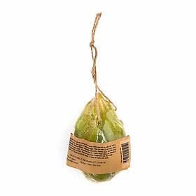 Xà phòng xơ mướp trà xanh - Green Tea Luffa Soap