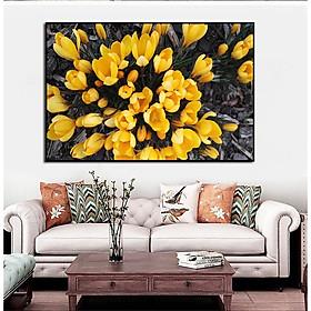 Tranh canvas Trang Trí Treo Tường- Hoa Tulip Vàng