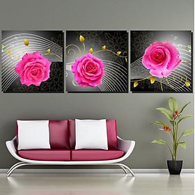 Tranh Canvas treo tường nghệ thuật | Tranh bộ nghệ thuật 3 bức | HLB_157