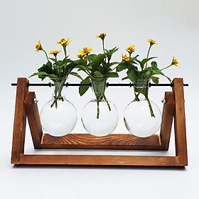 Bộ bình hoa thủy tinh treo giá gỗ phong cách retro