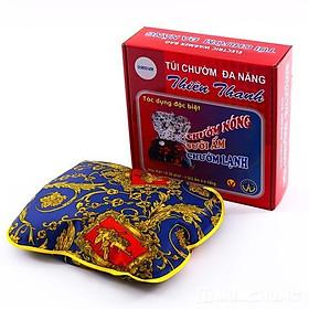 Túi chườm nóng lạnh Thiên Thanh cỡ nhỏ 27x22x7cm