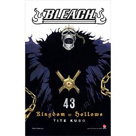 Bleach - Tập 43: Kingdom Of Hollows