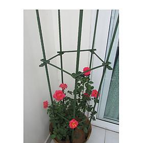 COMBO 2 KHUNG TRỒNG CÂY NGŨ GIÁC làm từ  ống tre thép bọc nhựa IBO và thanh liên kết Sapoto - Dùng làm khung, giàn cho hoa hồng leo, cây hoa leo