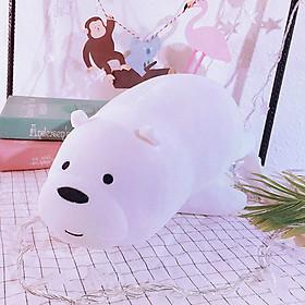 Gấu bông We Bare Bears Ice Bear Siêu Đáng Yêu 30CM