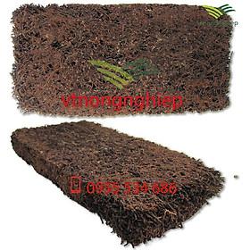 Dớn bảng trồng lan kích thước 30x15x2.5(cm)