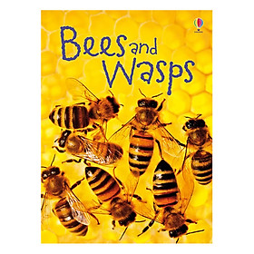 Usborne Bees and Wasps
