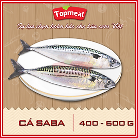 HCM - Cá saba (400 - 600g) - Thích hợp với các món kho, hấp cuốn bánh tráng, nướng chanh, sốt tương, chiên - [Giao nhanh TPHCM]
