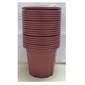 Hình ảnh 20 Chậu Nhựa Trồng Hoa, Cây Cảnh E230 CN