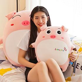 Gấu bông heo LOVE PIG cute 40cm TNB219 Mẫu 2, Heo bông ngộ nghĩnh đáng yêu
