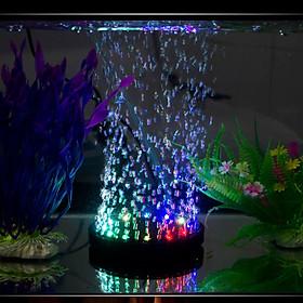 Sủi oxy kết hợp đèn led tự đổi màu dành cho hồ thủy sinh hồ cá
