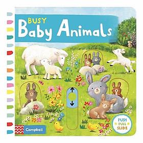 Cambell Fush Full Slide Series: Busy Baby Animals