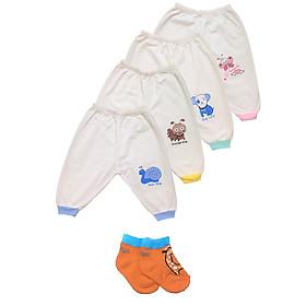 Combo 10 quần dài sơ sinh cotton trắng bo gấu Thái Hà Thịnh ( Quà tặng kèm 1 đôi tất sơ sinh TomTom Baby)