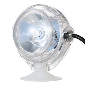 Đèn LED Thấu Kính Lồi Chống Nước Dành Cho Bể Cá