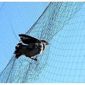 Lưới bẫy chim cu gáy 7cm cao 7m