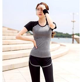 Sét Bộ đồ tập Áo thun + Quần thể dục, Gym, Yoga, Aerobic nữ cao cấp REAL-LION - RL05