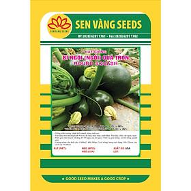 02 gói Hạt giống bí ngòi xanh Mỹ quả tròn giống ngắn ngày năng suất cao VTS88