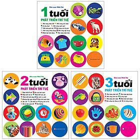 Combo 3 Cuốn: Bộ Phát Triển Trí Tuệ Cho Trẻ Từ:  0-1+ 2+ 3 Tuổi