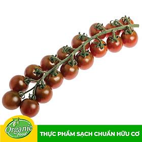[Chỉ Giao HCM] - Cà Chua Bee Socola hữu cơ Organicfood - 300g