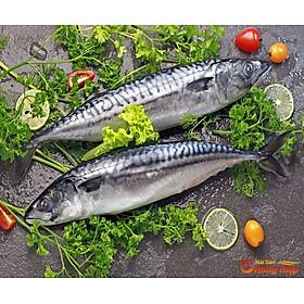 [Chỉ Giao HCM] Cá saba Nauy nhập khẩu 1kg