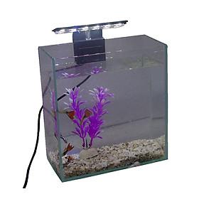 Bể cá mini để bàn 20x10x20cm có đèn