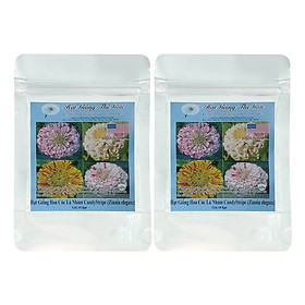 Bộ 2 Túi Hạt Giống Hoa Cúc Lá Nhám CandyStripe - Zinnia eleganz (10 Hạt)