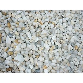 Sỏi thạch anh dùng trong xử lý nước, trang trí bể cá và nhà cửa (gói 1kg)