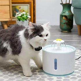 Smart Uống Đài Phun Nước 1 Năm Xanh Dương Thế Hệ 2 An Toàn Với Một Hệ Thống Cắt Tắt Khi Nước Chảy Ra Ngay Lập Tức 2,4L Đài Phun Nước Tự Động Cho Mèo Cưng Mèo Thú Cưng Chạy Điện USB Bát Cho Ăn Máy Uống Nước Cho Thú Cưng