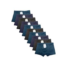 Bộ 10 Quần Lót Nam Đúc Nhiều Màu SoYoung 10MEN DL 008 (Free Size)