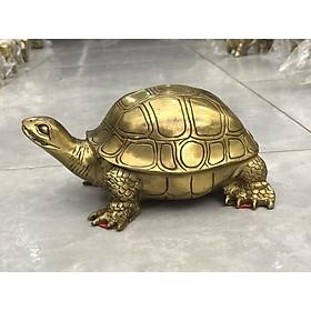 Tượng rùa bằng đồng cỡ đại