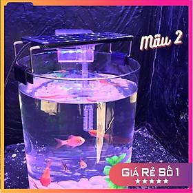 Bể cá mini để bàn tròn D20H30 COMBO Hồ Lọc Đèn kèm phụ kiện tiểu cảnh