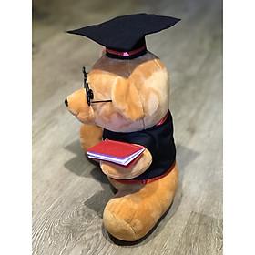 Gấu bông tốt nghiệp màu nâu lông mịn 40cm