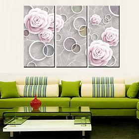 Tranh Canvas treo tường nghệ thuật | Tranh bộ nghệ thuật 3 bức | HLB_016