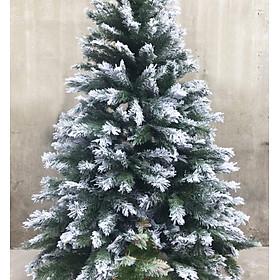 Cây thông noel 3 loại lá phủ tuyết (Cây 210cm)