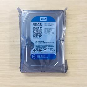 Ổ cứng HDD WD 250GB Blue | Hàng nhập khẩu