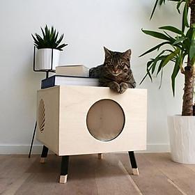 Nhà Gỗ Hình Hộp Chữ Nhật Siêu Đáng Yêu Cho Mèo CH001