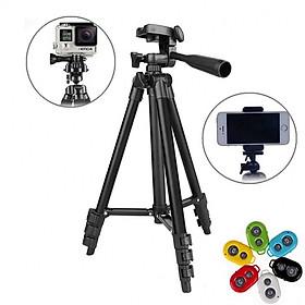 Chân máy ảnh Tripod 3120 tặng Giá kẹp điện thoại, Remote và Túi đựng