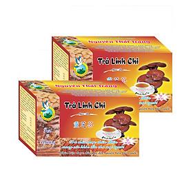 Combo 5 Hộp Trà Linh Chi (Hộp 20 Túi Lọc X 2gr) - Tăng Tuổi Thọ, Bồi Bổ Sức Khỏe  - Nguyên Thái Trang – Thảo Dược Thiên Nhiên