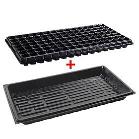 3 Bộ Vỉ nhựa ươm hạt giống kèm Khay chứa nước ươm cây 55*30*5.5 cm, Kit khay nhựa PVC