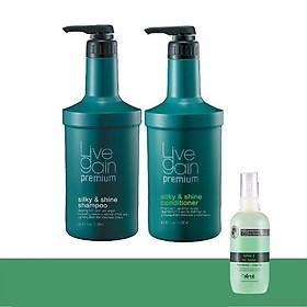 Bộ Gội + Xả/Hấp Giữ Màu Nước Hoa Livegain Premium Silky & Shine 2400ml + Tặng 1 Chai Xịt Dưỡng ARTE Hàn Quốc120ml