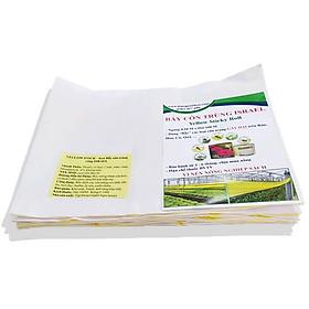 Bẫy Ruồi Nông Nghiệp gây hại Rau Hoa Củ Quả đạt hiệu quả 90% bằng Cuộn Keo Dính Vàng 2 mặt keo (Ngang 18cm x 100 mét dài ), thời gian hiệu lực trên 8 tháng chịu mưa nắng