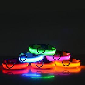 Vòng cổ đèn LED cho chó mèo