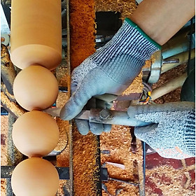 Vòng lắc eo bụng tràng hạt , Vòng lắc hạt gỗ giảm béo thon eo - Hình thật-8